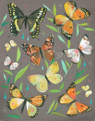 butterflies.jpg