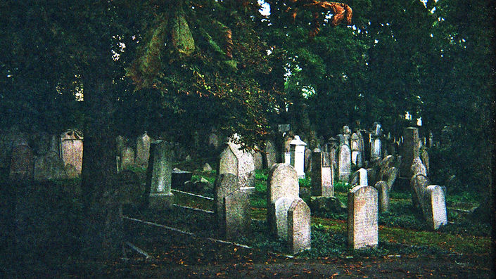 analogphotography,cementery,praga,film,35mm,verde,cememariapeyret,peyretmaria,cementerio,live,die