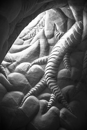 Ra Paulette Cave