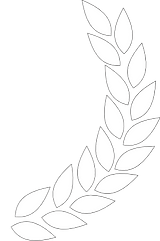 PngJoy_laurels-white-laurel-wreath-png-p