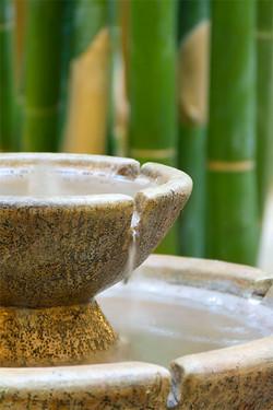 Bamboos & Fountain