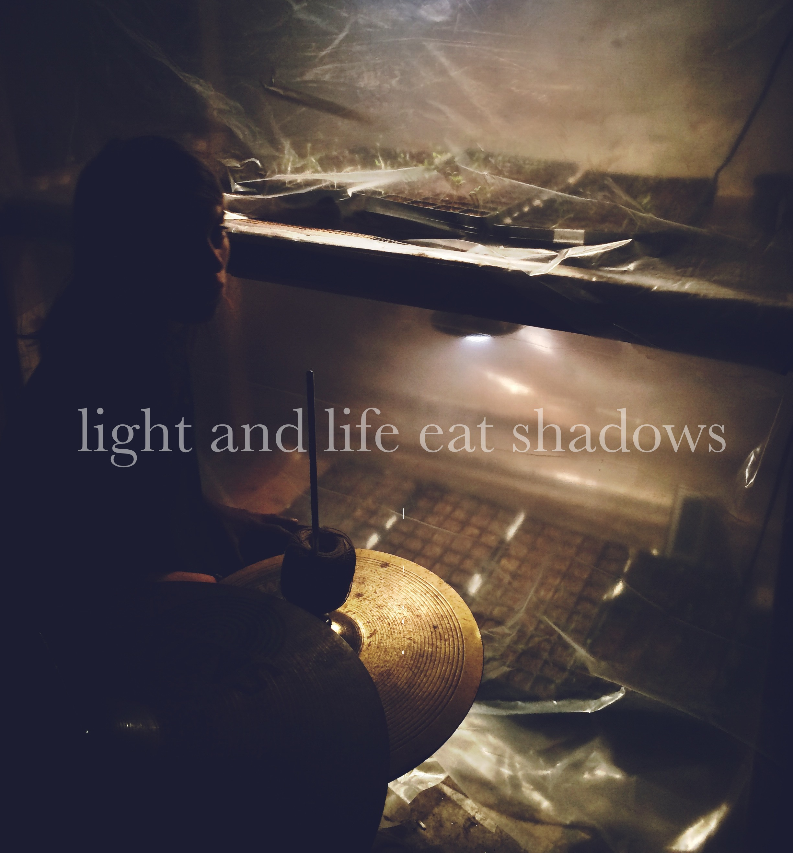 Eat Shadows