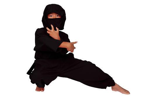 A ninja taking fighting poses.jpg