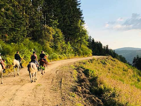Trekking: viaggi a cavallo