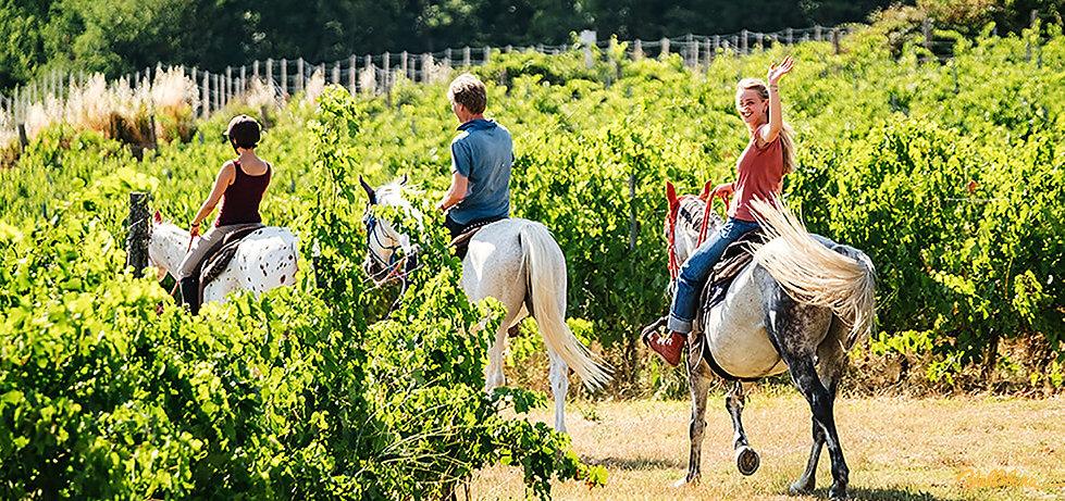 passeggiata a cavallo a Vallebona