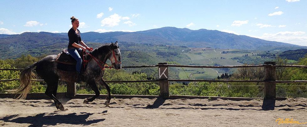 cavallo e cavaliere lavorano in maneggio