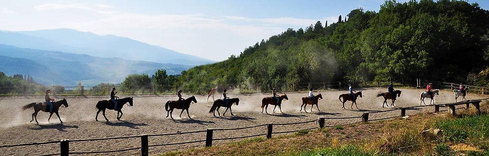 maneggio-cavalli.jpg