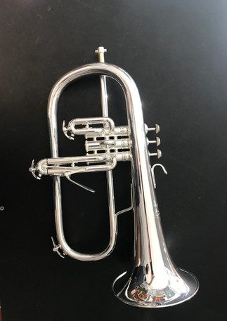 Bach flugal horn just got silver plated and looks brand new.