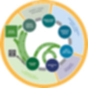 circular_economy_framework_600.jpg
