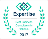 laurels_expertise - best business consul