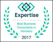 laurels_expertise - best business consul