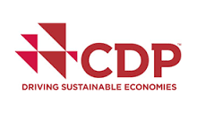 Reduce Your Carbon Footprint - Sustainable Pacific Provides CDP Services in Hawaiʻi