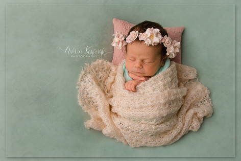 north west newborn photographer