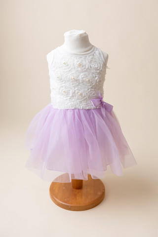 girls 1st birthday dress purple birthday photoshoot