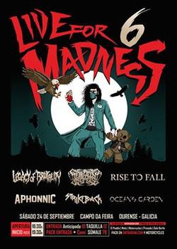 VI LIVE FOR MADNESS METAL FEST