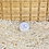 Thumbnail: Baume déodorant neutre