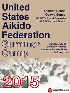 2015_usaf camp poster FINAL 2015.jpg