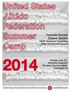 2014_usaf camp 2014 poster FINAL.jpg