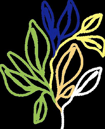 plantes.png