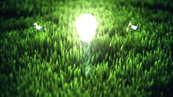 E3D GRASS TEST