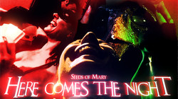 visuel here comes the night (0-00-00-00)