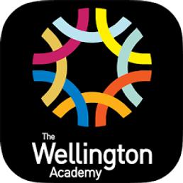 The Wellington ACademy.png