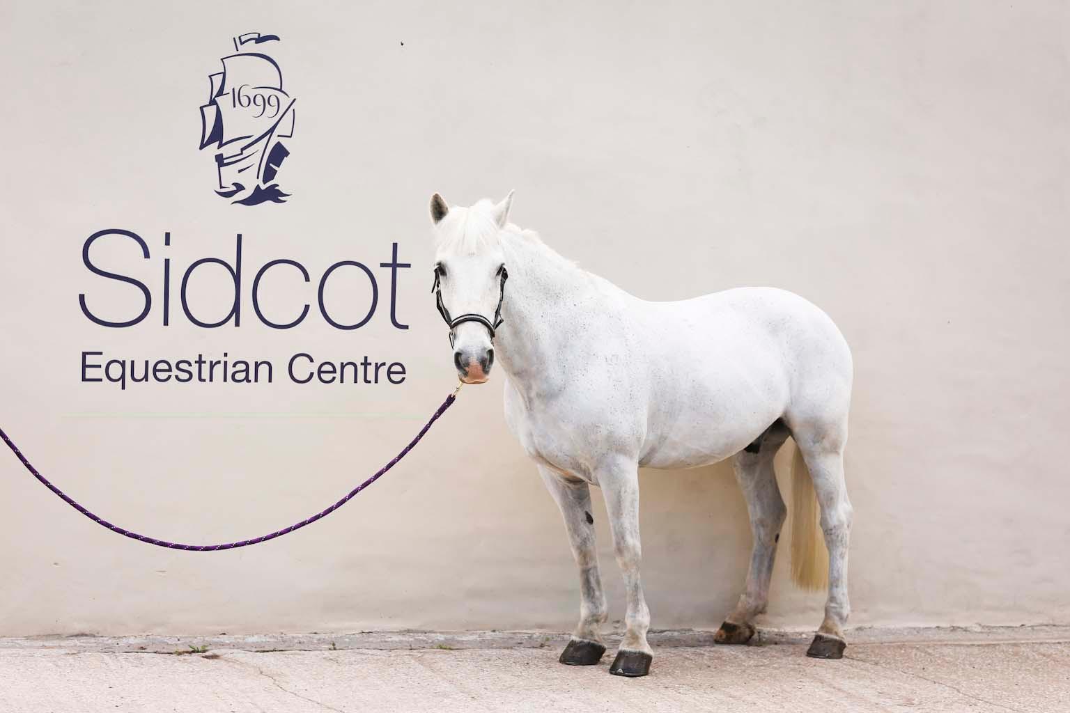 23.Equestrian Centre.jpg