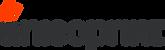 AP logo transparent.png