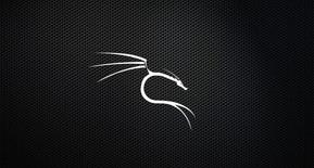 Kali_Linux_4.jpg