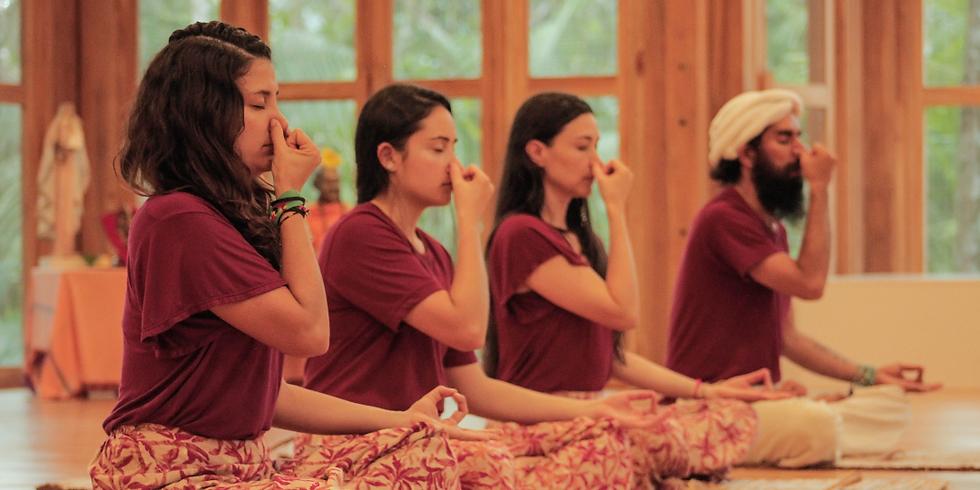 Certificación Yoga, Ayurveda y Ecología Védica