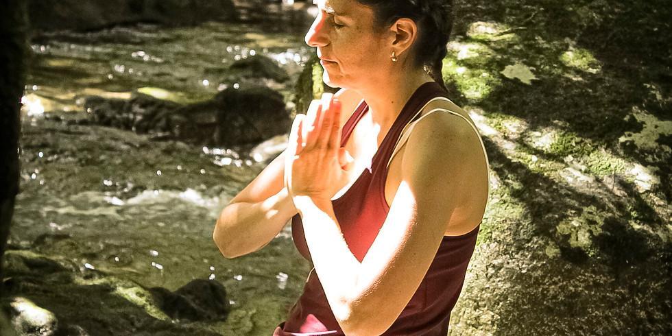 Profesorado Flexible Yoga, Ayurveda y Ecología Védica