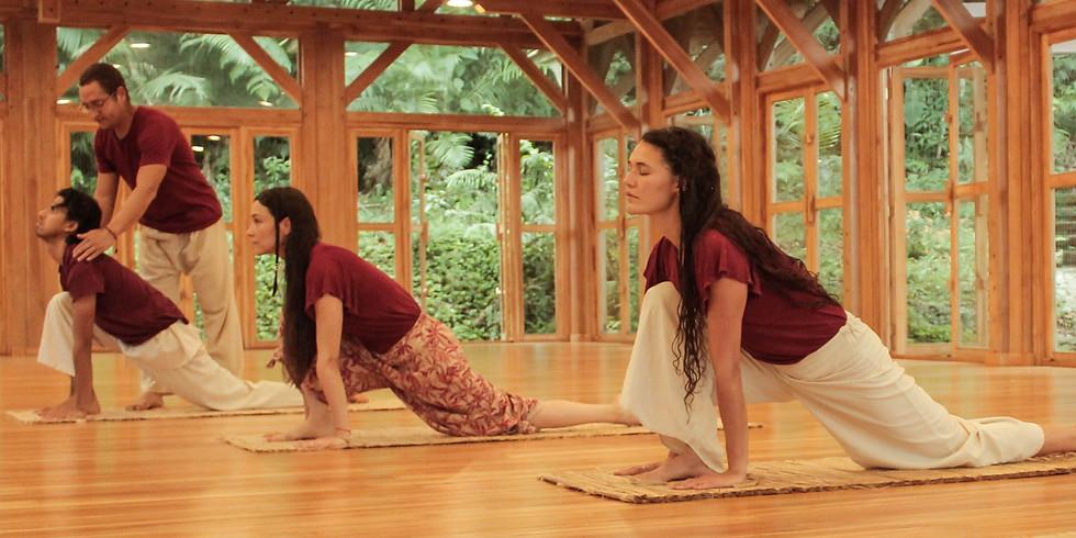 Certificación Yoga Avanzado y Sadhana Profunda