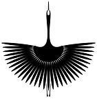 BLACK SWANS 1.jpg