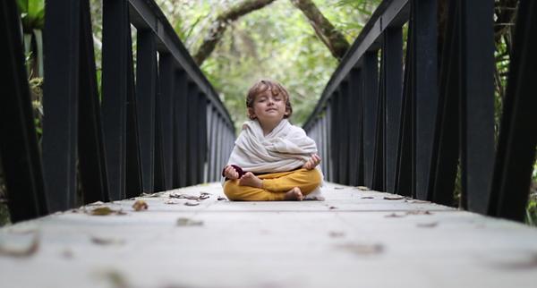nara meditacion.png