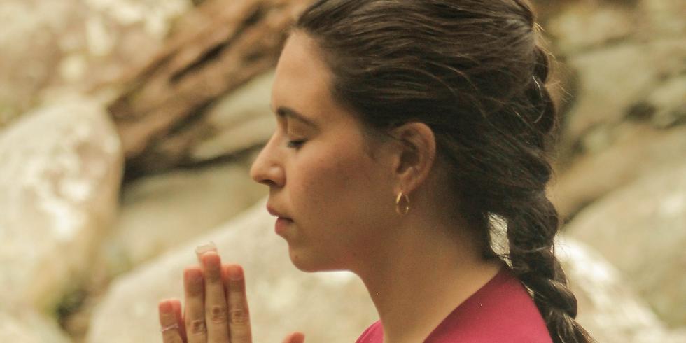 Workshop Meditación