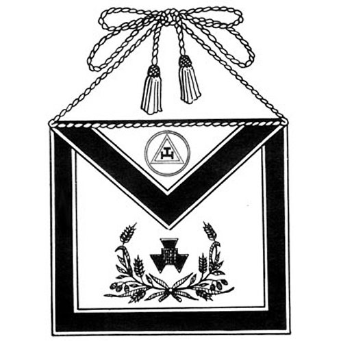 Chapter or Council Officer/PHP & PTIM Apron 8