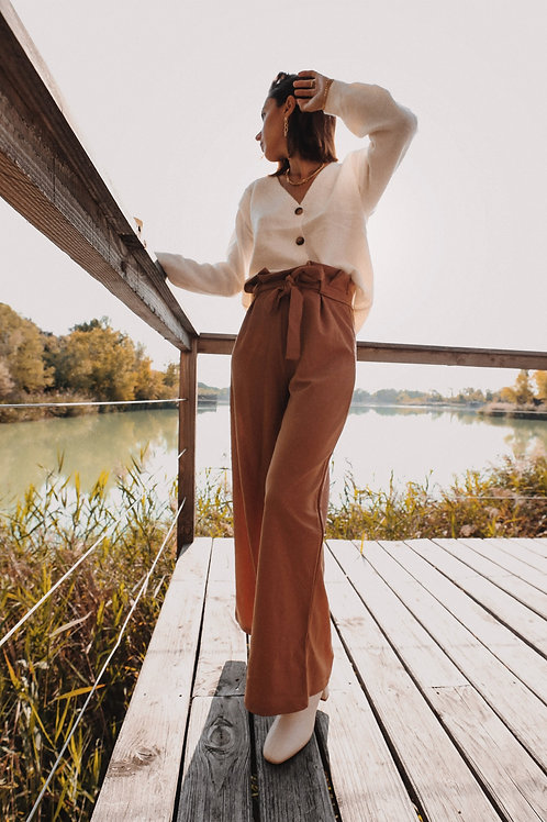 Brown Autumn Trousers