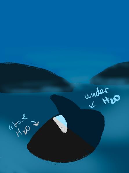 Whale - color script