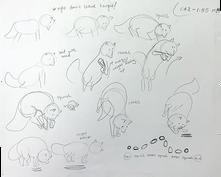 Fox pounce study