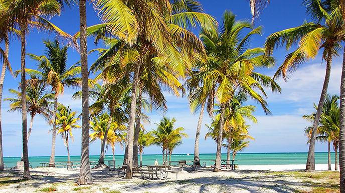 La Convenzione Italia-stati Uniti contro la doppia tassazione: investimento immobiliare a Miami
