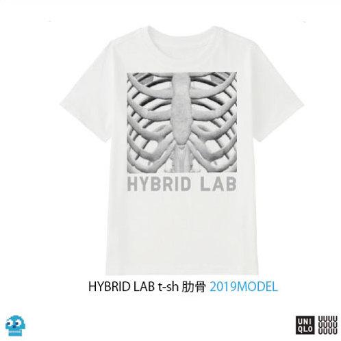HYBRID LAB t-sh 肋骨 2019MODEL