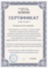 сертификат от Цимбалиста.png