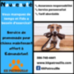 Dog Walking Canva.jpg