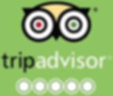 TripAdvisor Logo_edited.jpg