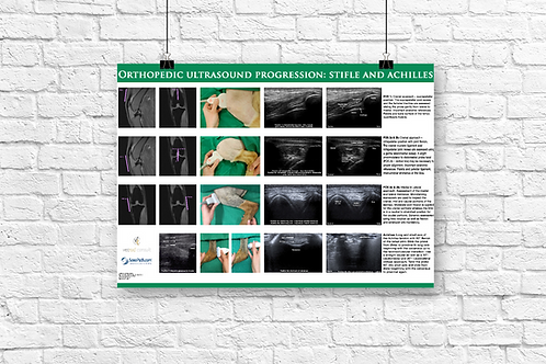 Orthopedic Progression Poster