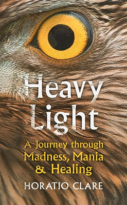 Heavy Light : A Journey Through Madness, Mania and Healing by Horatio Clare