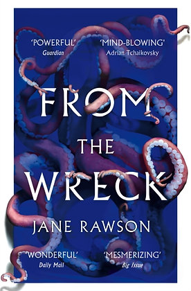 From The Wreck by Jane Rawson