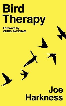 Bird Therapy by Joe Harkness
