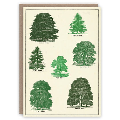 Greetings Card - Trees