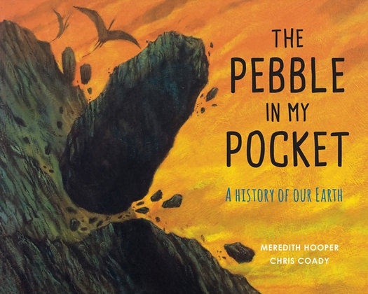 The Pebble in My Pocket : A History of Our Earth by Meredith Hooper